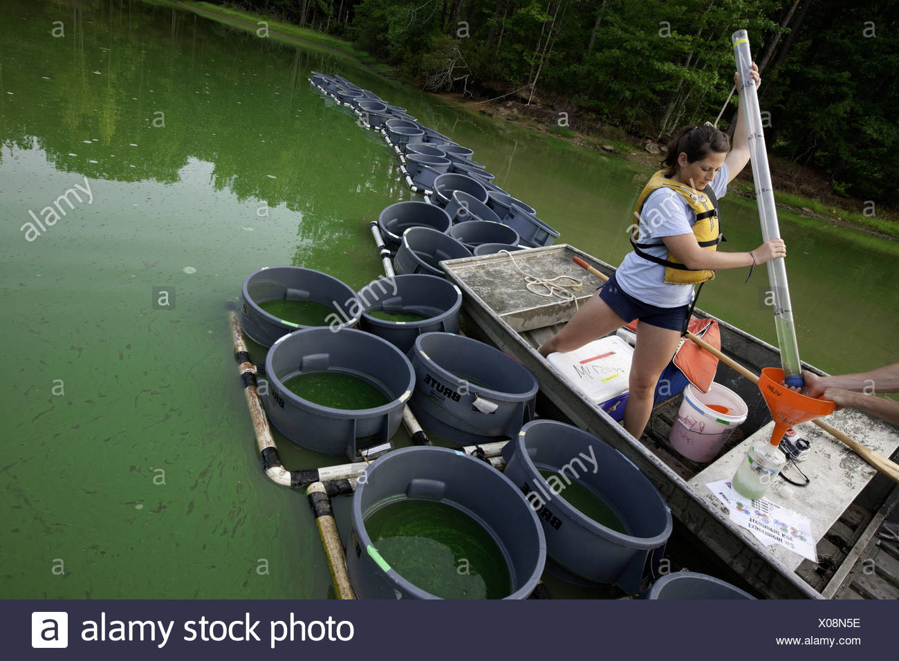 Students taking water samples at S-10 Auburn Fisheries pond, Auburn, Alabama. They are students of Alan Wilson and studying - Stock Image