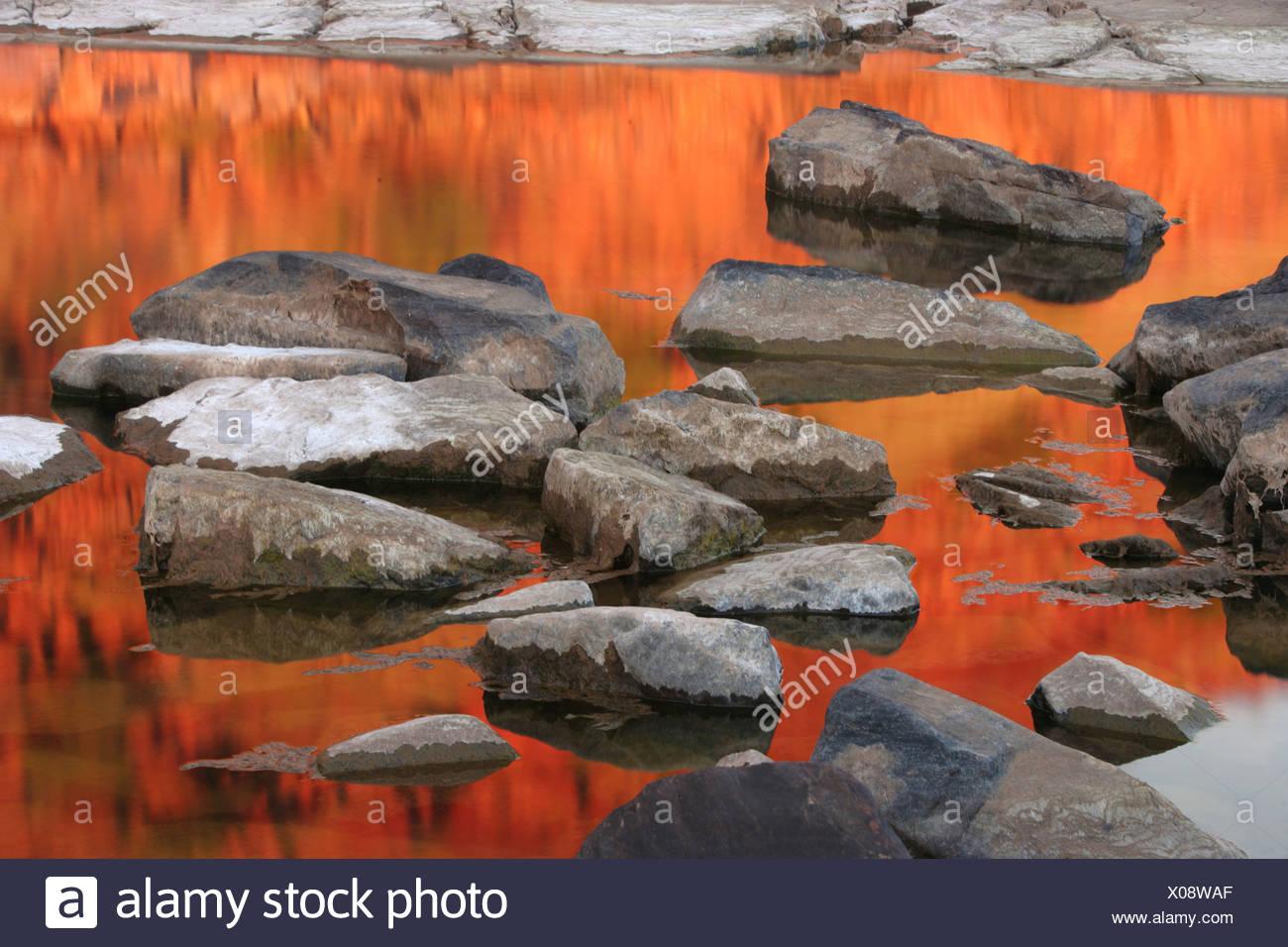 Dimond Gorge, Mornington Sanctuary, Kimberley region, Western Australia - Stock Image