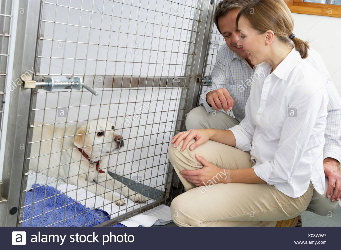 Couple Visiting Pet Dog - Stock Image