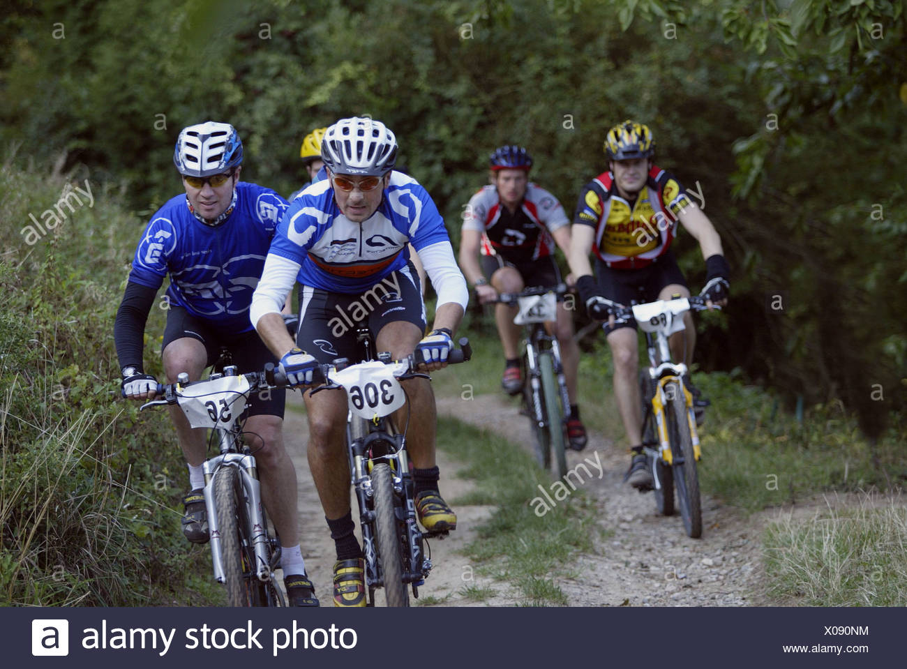 Riding mountain bikes in the forest is gaining popularity Stock Photo