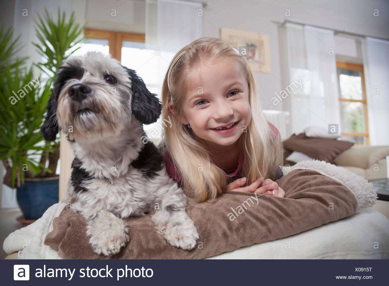 Girl with dog in a living room, Bavaria, Germany - Stock Image