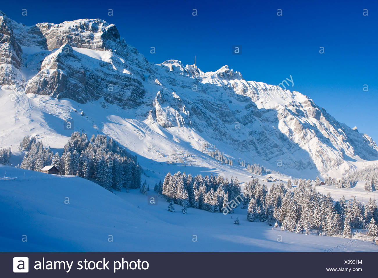 Winter Snow Mountain Mountains Appenzell Appenzell