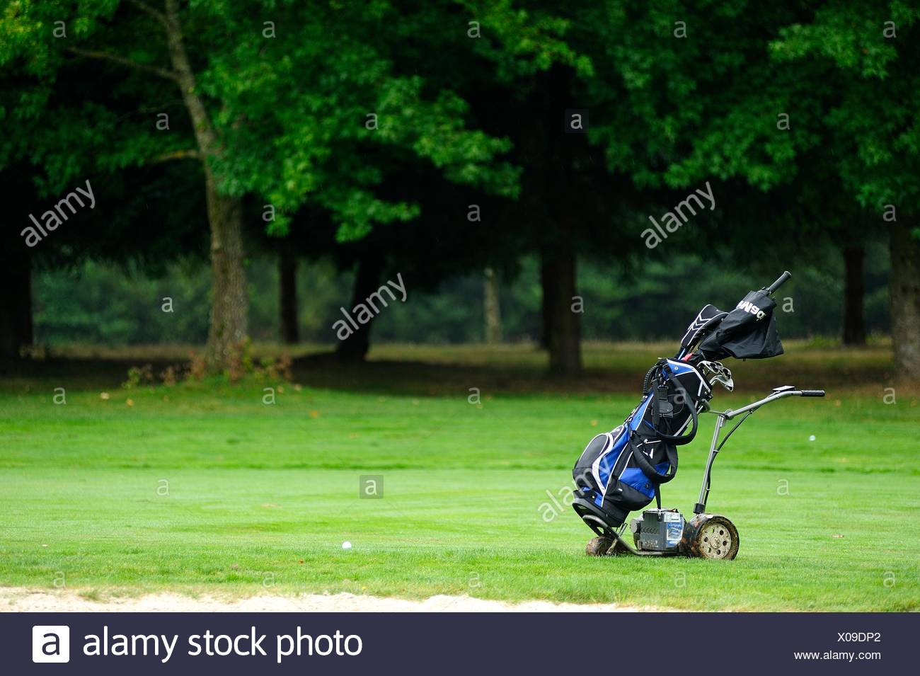 Golf cart without people on the golf course - Stock Image