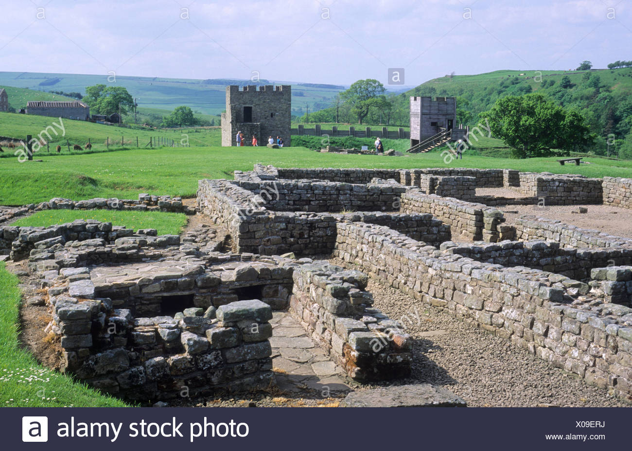 Vindolanda Roman archaeological Site Northumberland Hadrians Wall English archaeology ruins walls camp England UK history ruin - Stock Image