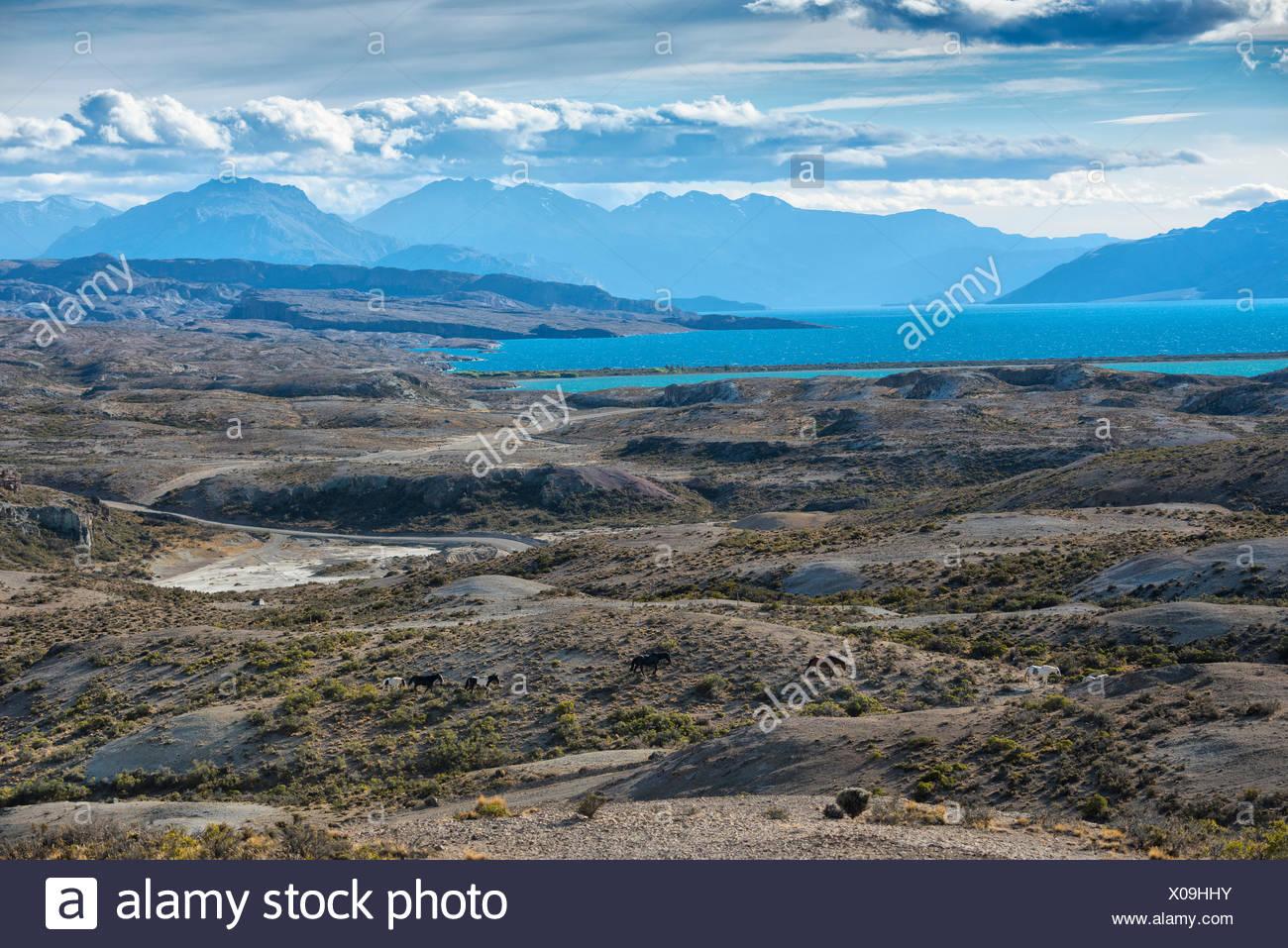 South America,Argentina,Santa Cruz,Patagonia,Lago Posadas,Lago Pueyrredon - Stock Image