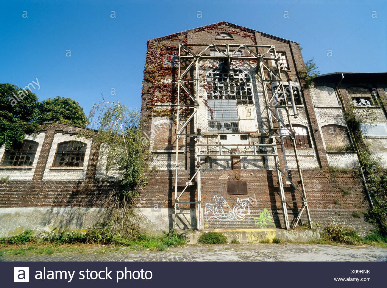 Ruined storage warehouse, Alter Rheinhafen harbour, Uerdingen district, Krefeld, North Rhine-Westphalia, Germany, Europe - Stock Image