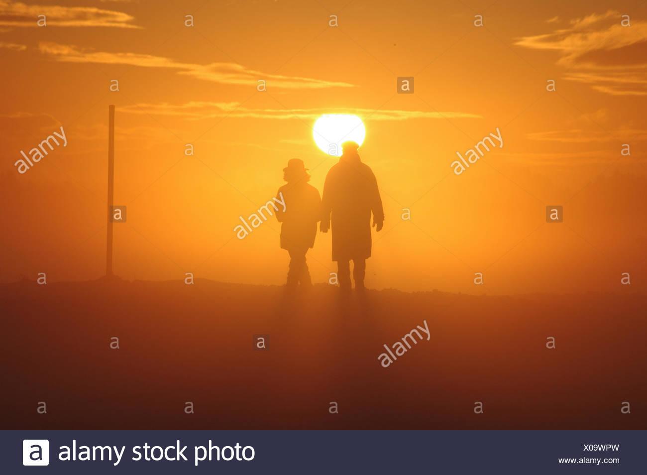 sunset,fog,silhouette - Stock Image