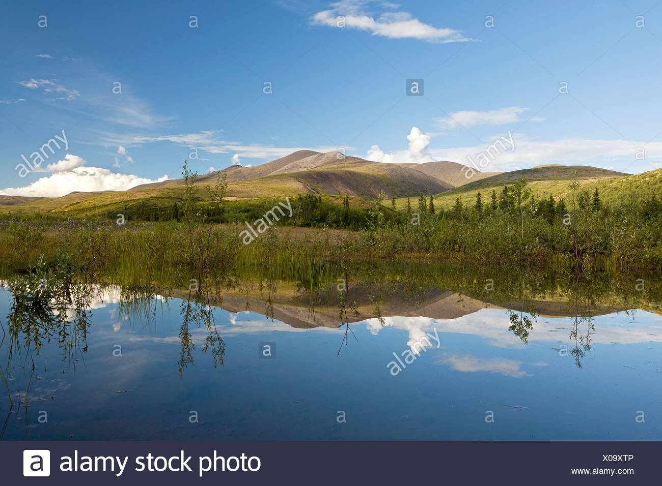 View from a quiet lake to Mount Fairplay in Alaska, USA, North America - Stock Image