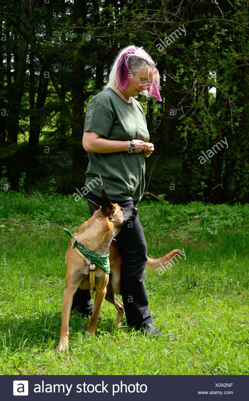 Dog trainer with dog - Stock Image