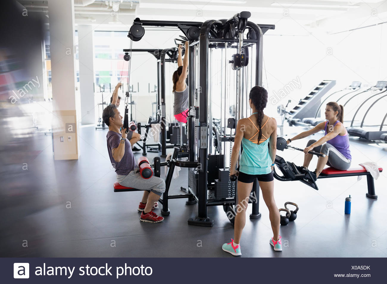 People working out on exercise equipment at gym - Stock Image