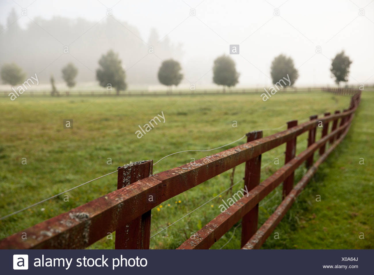 Wooden fence in field - Stock Image