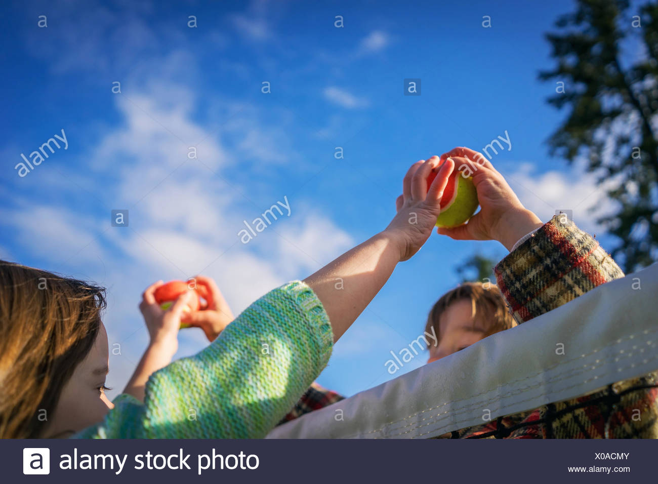 Two children passing tennis balls over the top of the net - Stock Image