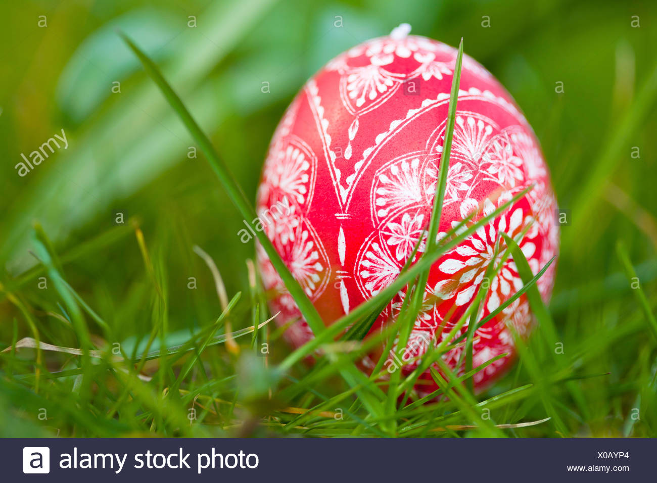 Scratched red easter egg in grass, Easter, Spring - Stock Image