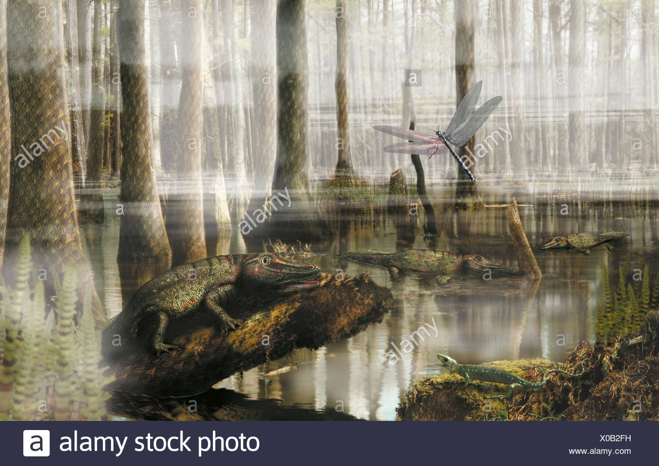 Lobisomem (Universidade dos Lobos) - Página 5 Prehistoric-swamp-forest-landscape-with-hylonomus-eryops-and-arthropod-front-view-X0B2FH