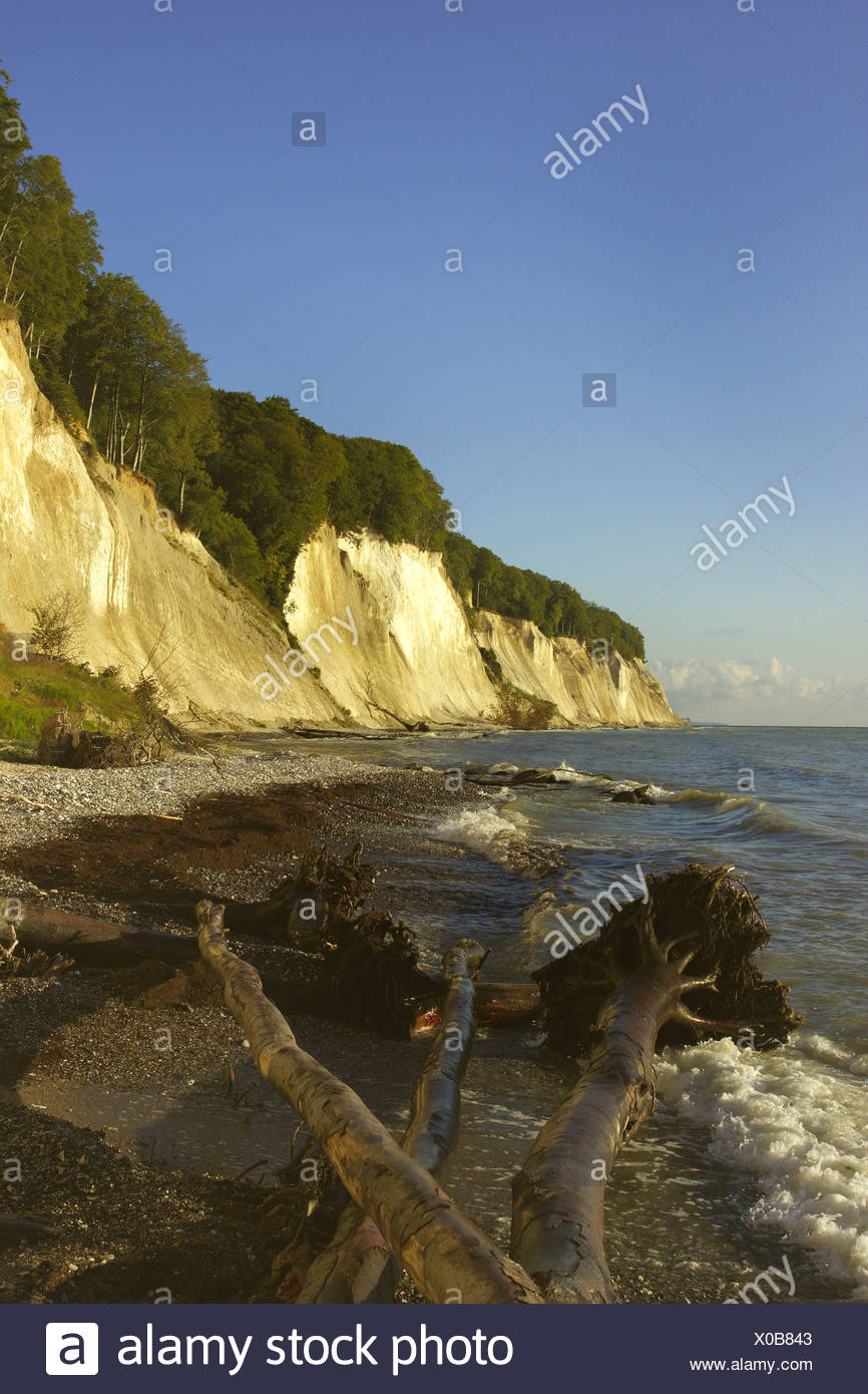 Jasmund National Park chalk cliffs, Kollicker Ufer, Germany, Mecklenburg-Western Pomerania, Ruegen, Jasmund National Park Stock Photo