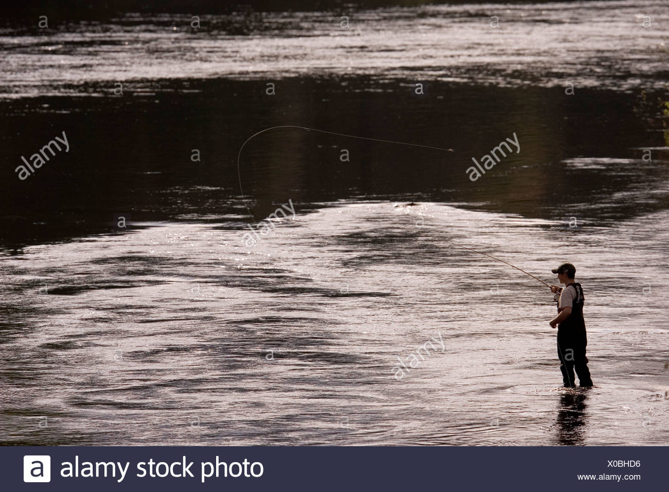 A man fly fishes for trout on the Moose River in Maine. - Stock Image