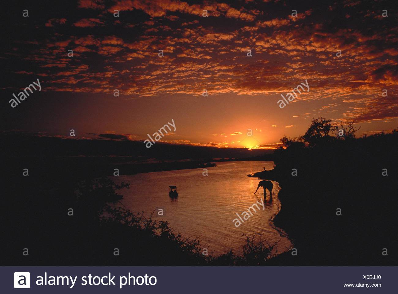 Sunset over Chobe River Botswana, Africa - Stock Image