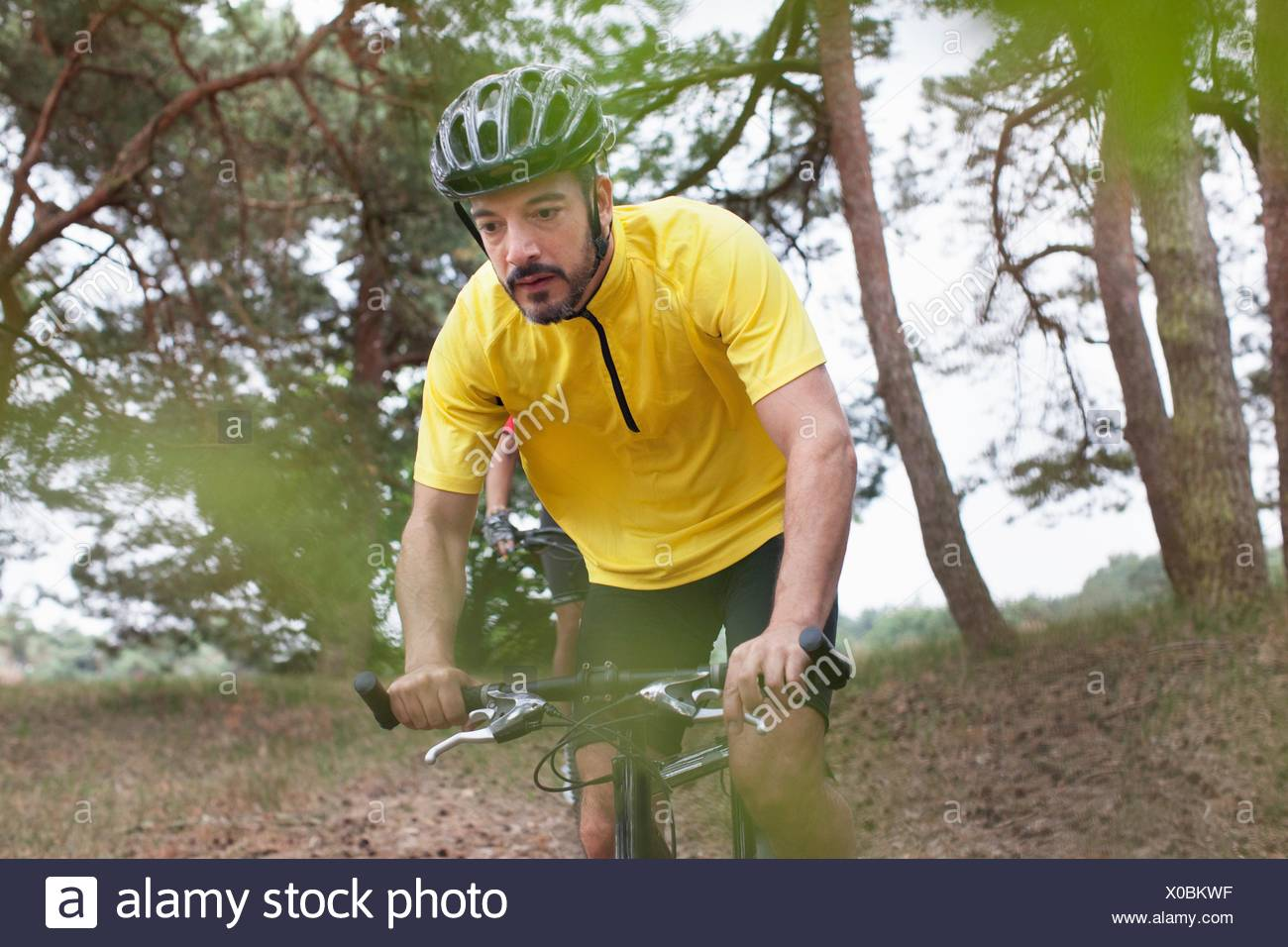Male mountain biker in forest - Stock Image