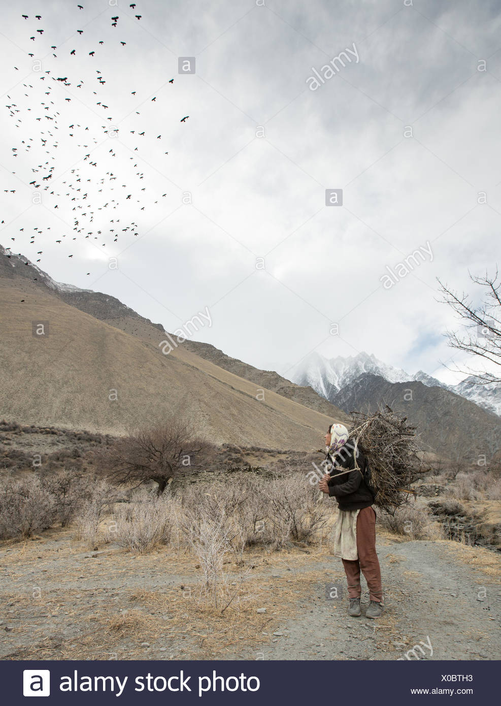 A woman returning home after getting wood for cooking and heating and hay to feed their livestock, a two hour walk. Stock Photo