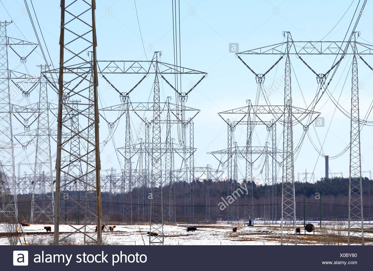 Power lines on snow covered landscape against the sky Stock Photo