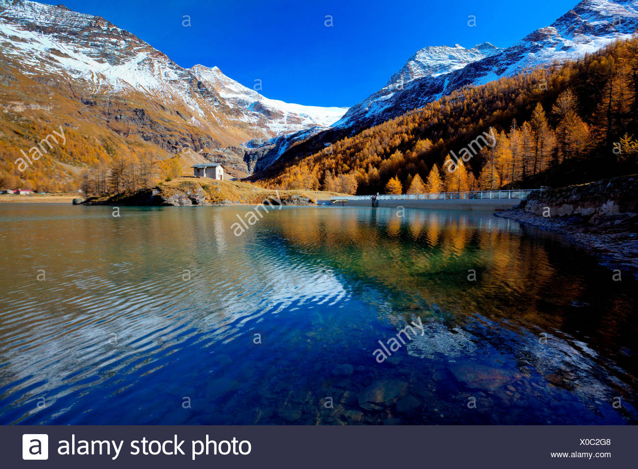 Reflections in the blue lake of Alp Grum in autumn. In the background the snowy peaks and glacier Palù. Poschiavo Valley Canton of Graubünden Switzerland Europe - Stock Image