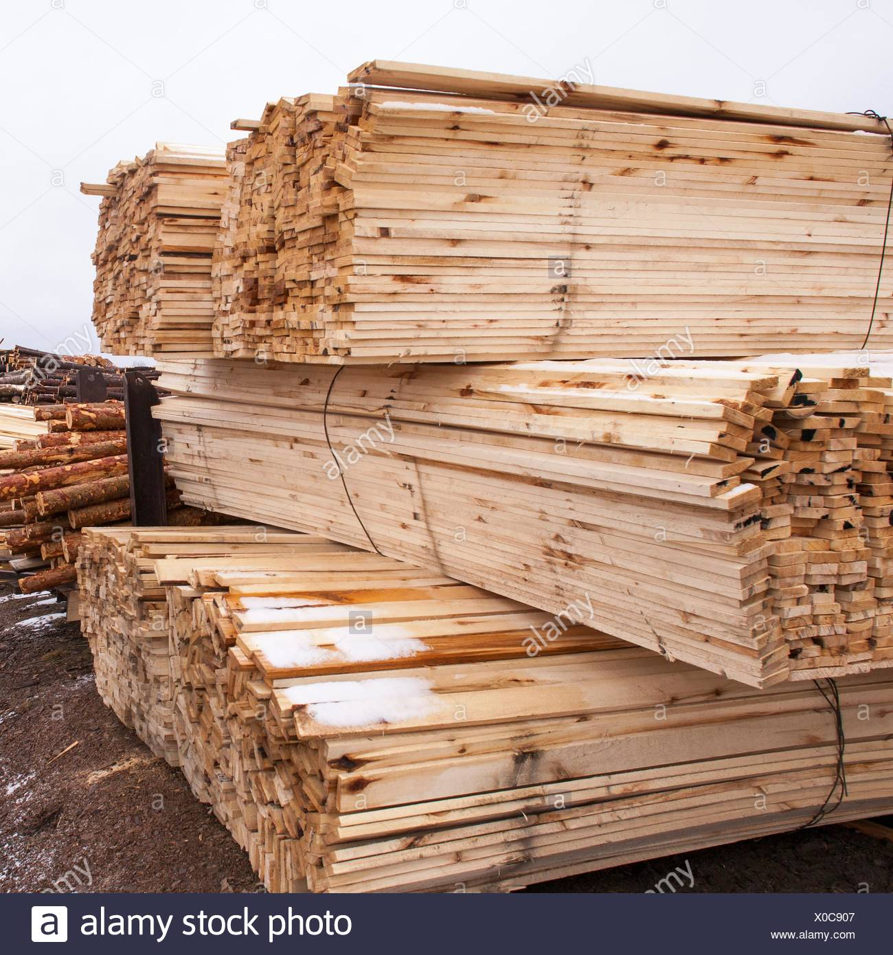 Stacks of timber and tree trunks in timber yard - Stock Image