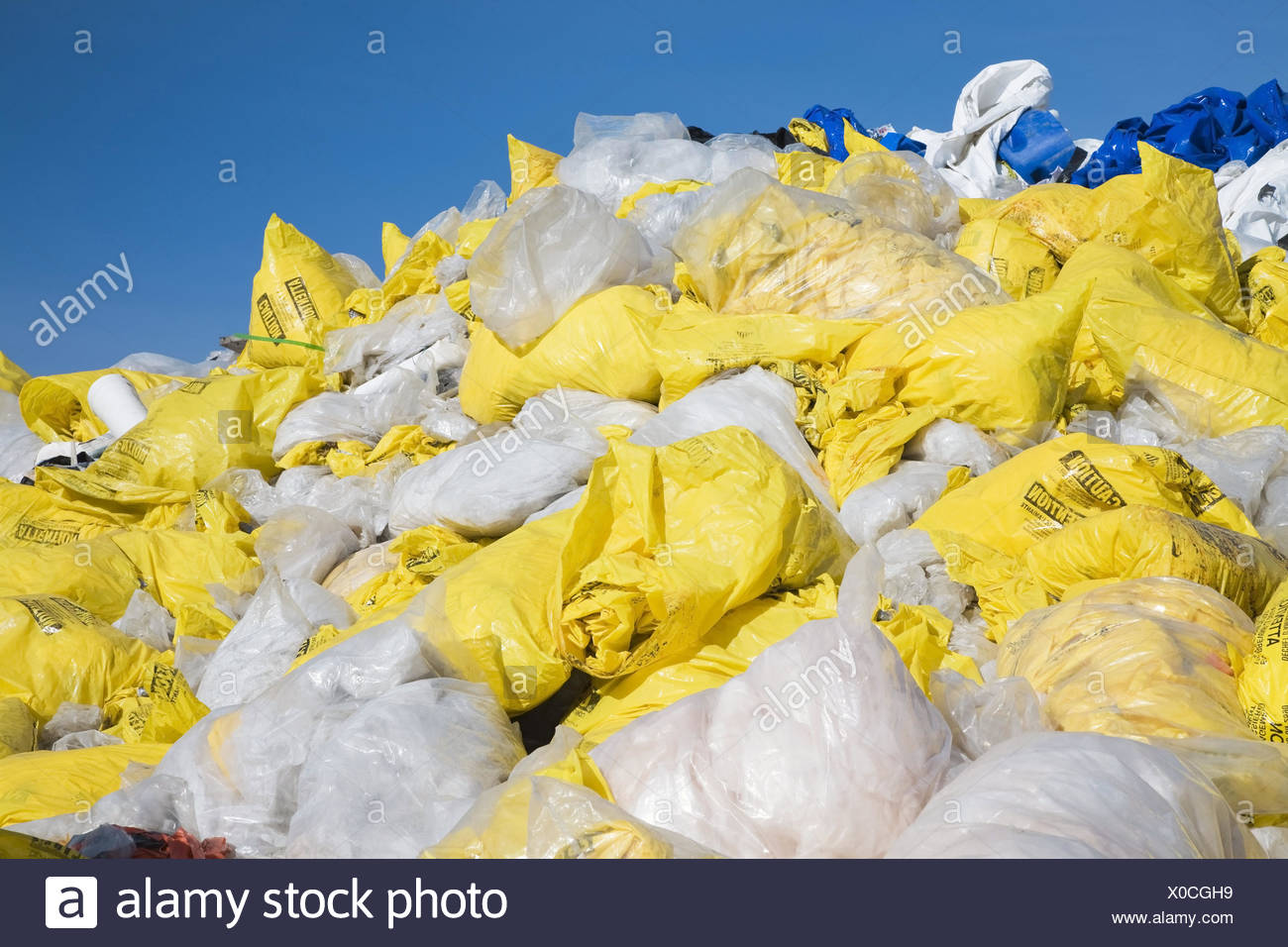 Discarded plastic bags filled with asbestos fibres at a recycling yard, Laval, Quebec, Canada - Stock Image