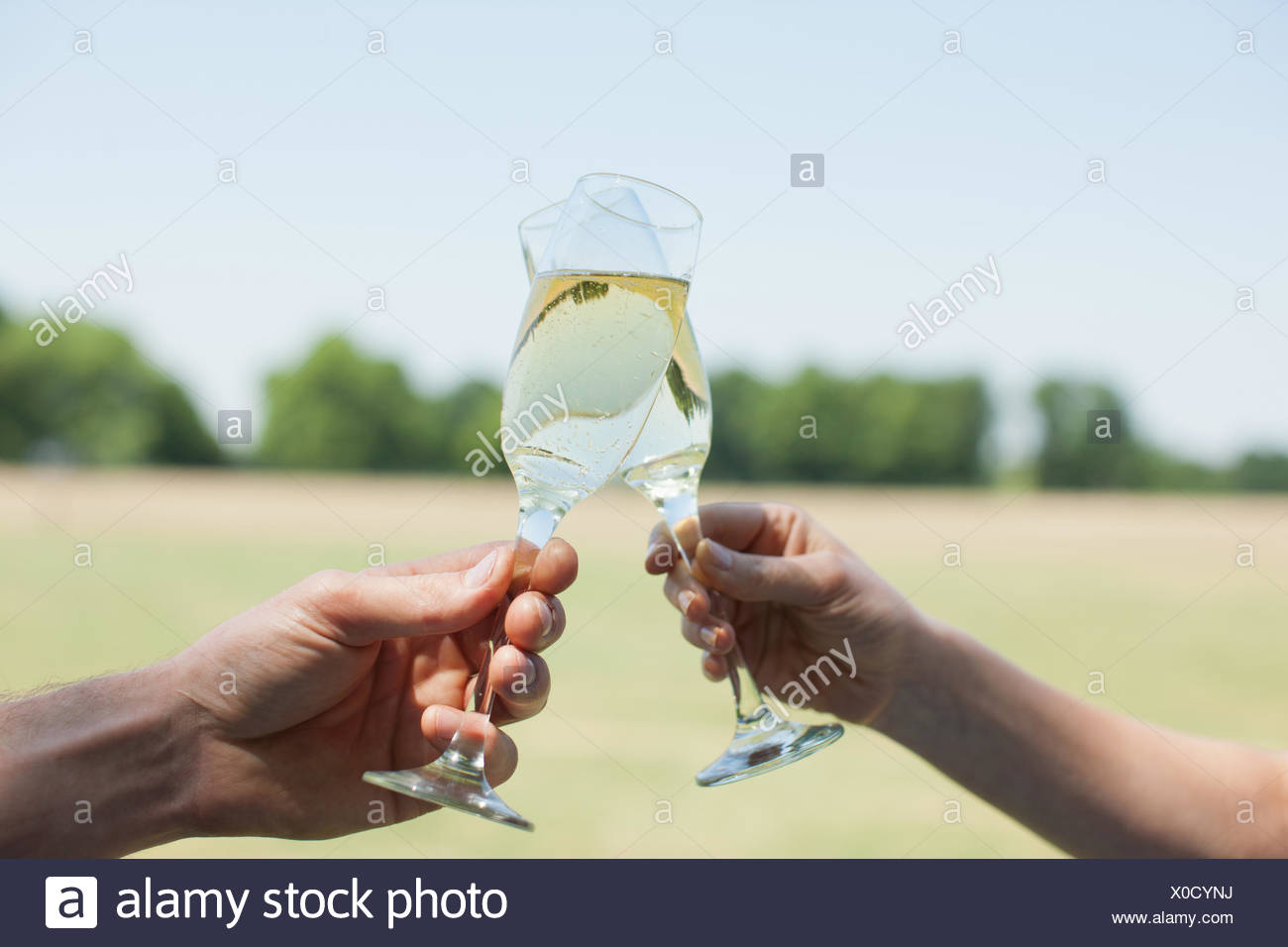 Couple drinking Champagne and toasting - Stock Image