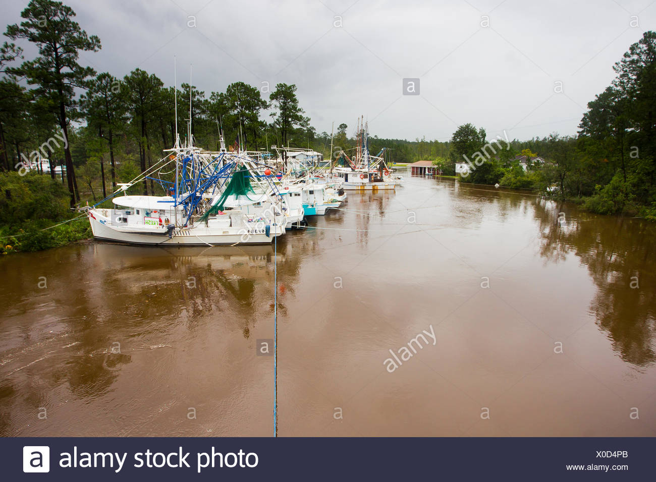 Fishing boats tied up in a river to protect them from Hurricane Isaac. - Stock Image