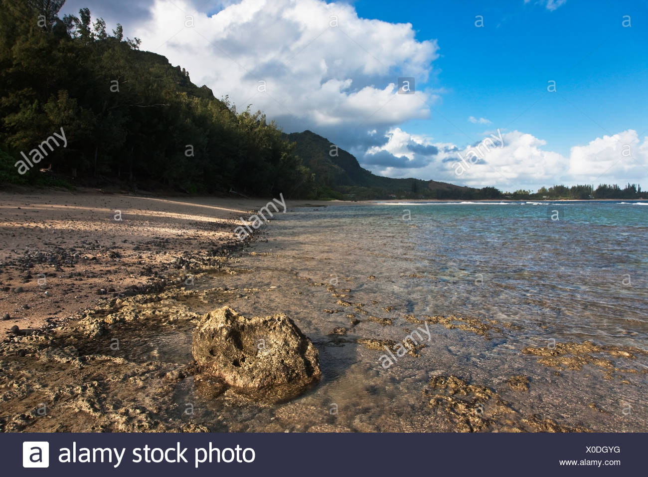 Kauai, Hawaii, United States Of America; Shallow Water Covers A Flat-Topped Coral Reef Along The North Shore Of Kauai - Stock Image