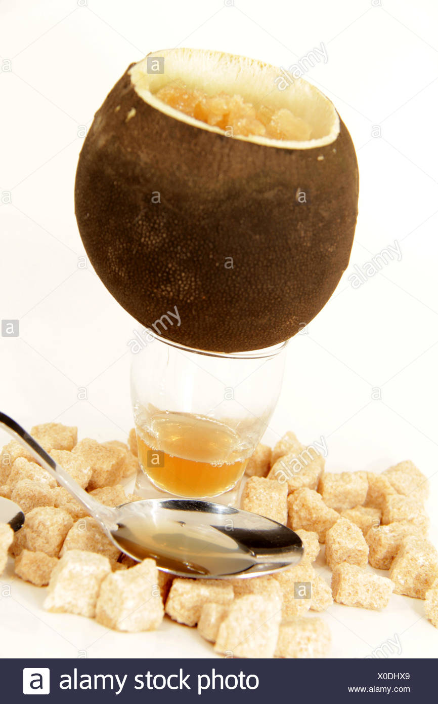 production of natural cough syrup from winter radi - Stock Image