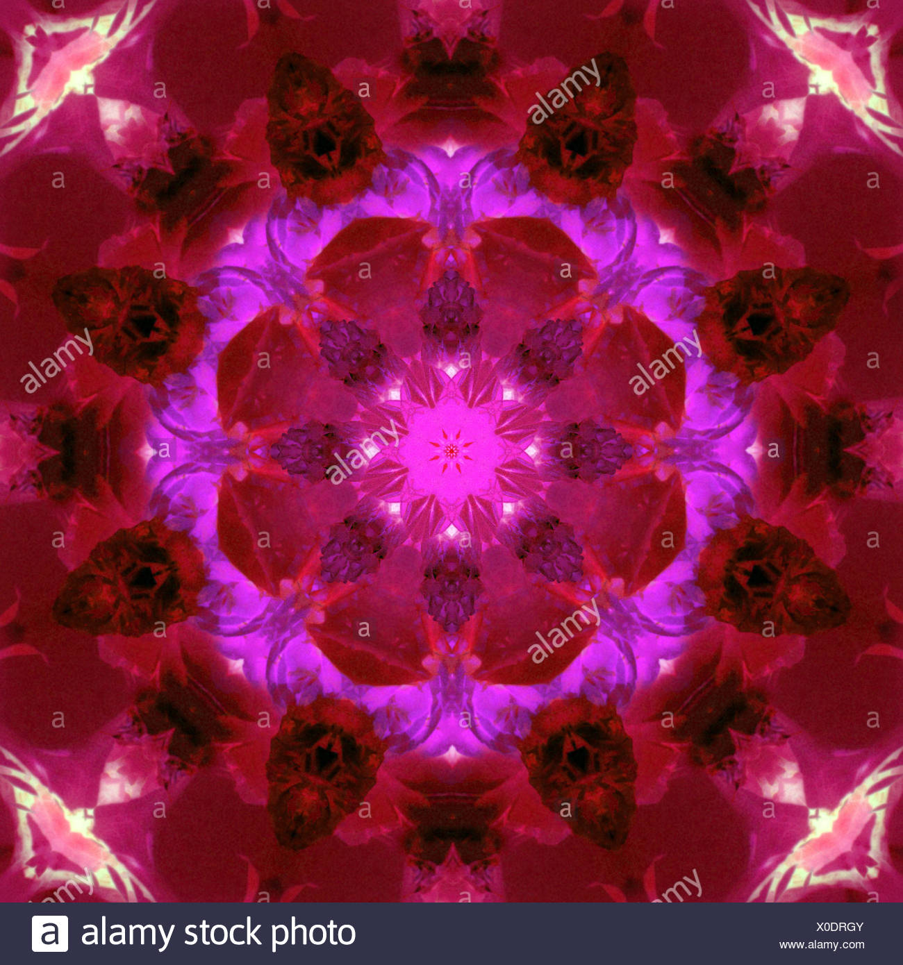 bright energetic mandala ornament from flowers Stock Photo