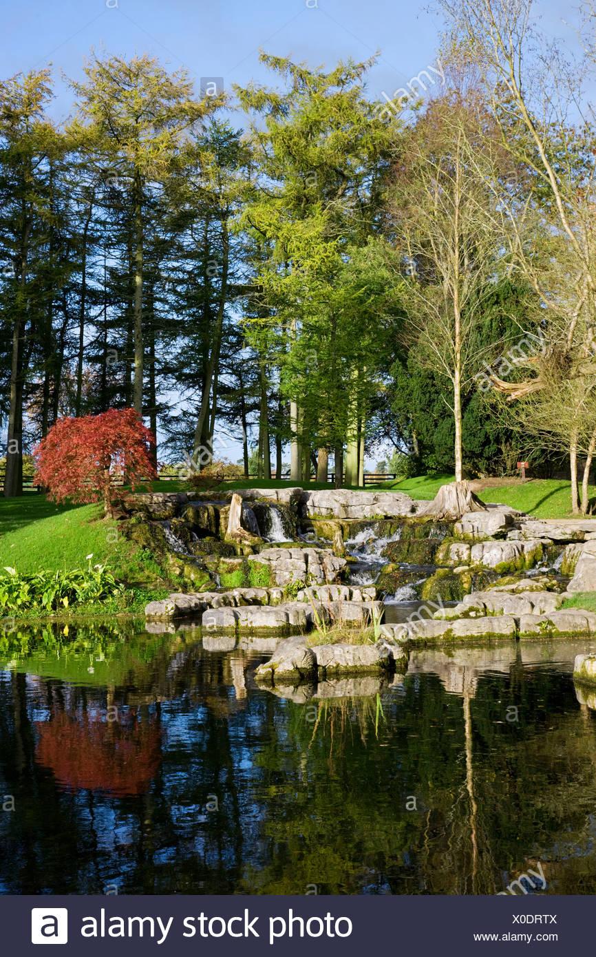 Republic of Ireland, Kildare, St Fiachra's Garden in Kildare - Stock Image