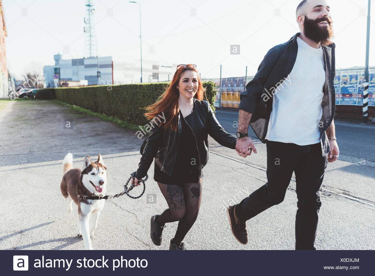 Couple walking with dog, Milan, Lombardia, Italy, Europe - Stock Image