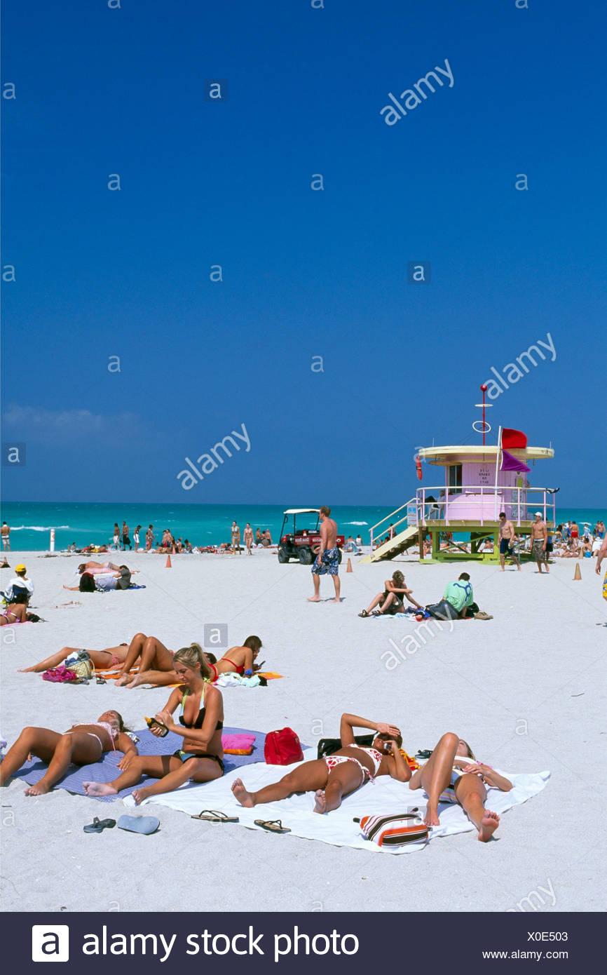 Miami South Beach Local Wildlife: South Beach Florida People Stock Photos & South Beach