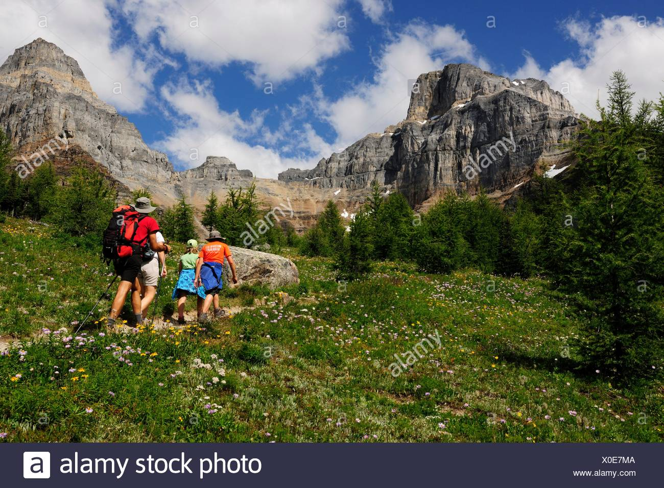 Hikers rambling in the Rocky Mountains, Banff National Park, Alberta Province, Canada - Stock Image