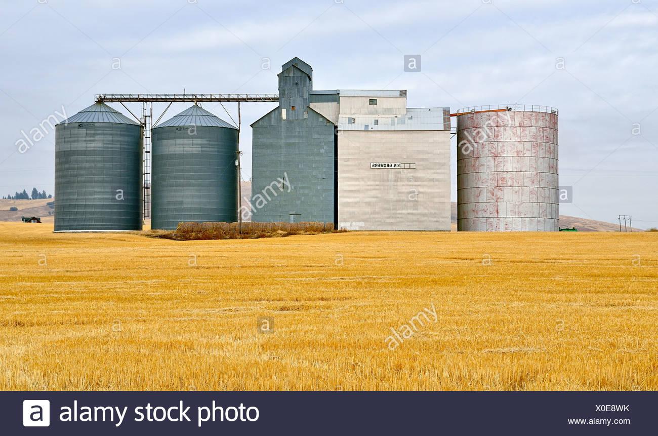 Grain silos near Moscow, Highway 95, Idaho, USA, PublicGround - Stock Image