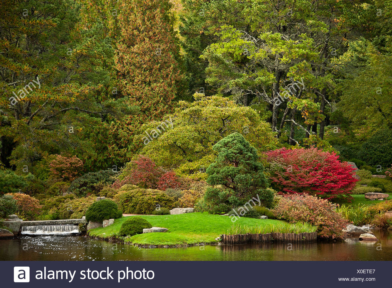 Asticou Azalea Garden, public, Northeast Harbor, Maine, USA - Stock Image