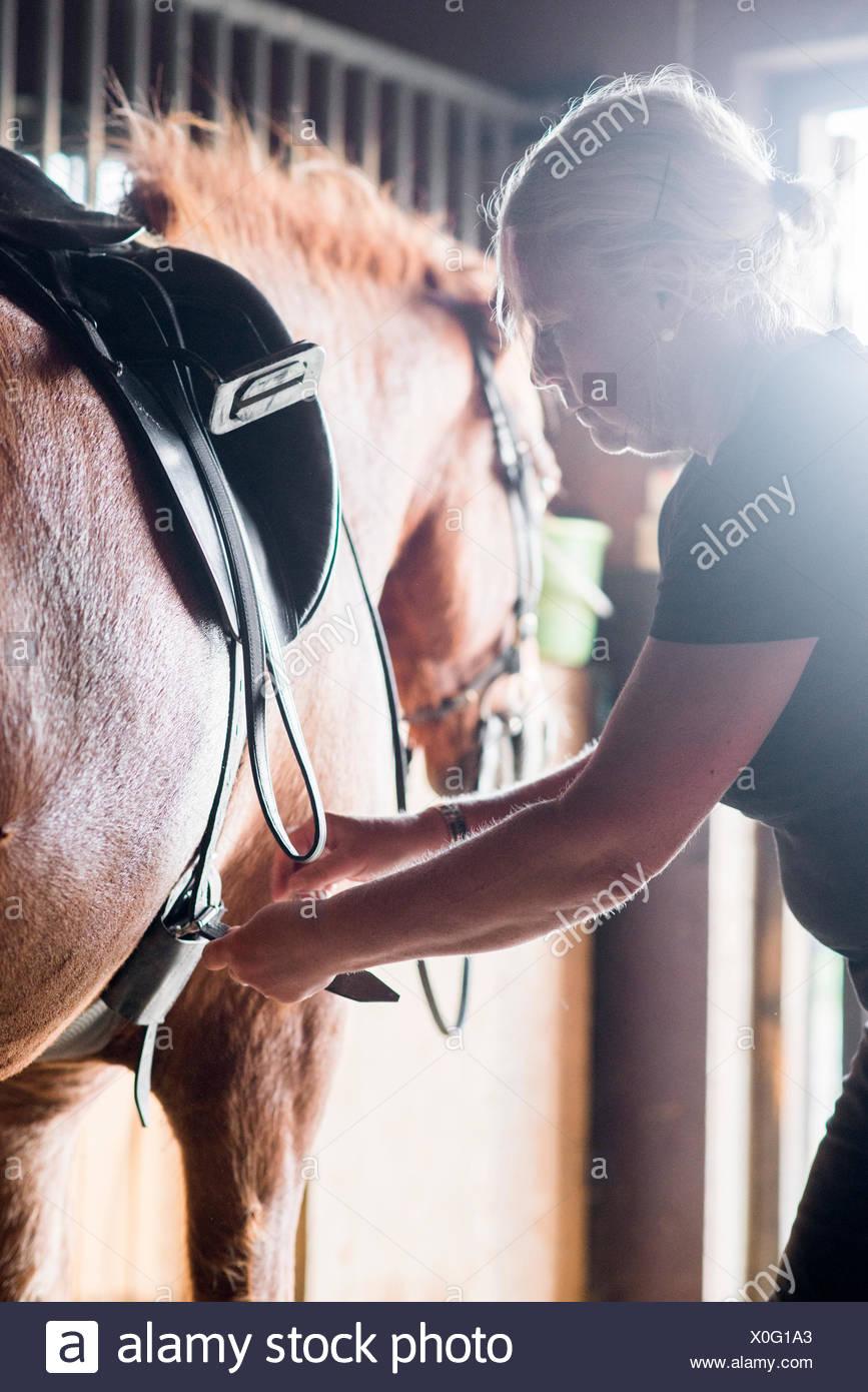 Sweden, Vastra Gotaland, Kungalv, Karna, Woman adjusting saddle on horse - Stock Image