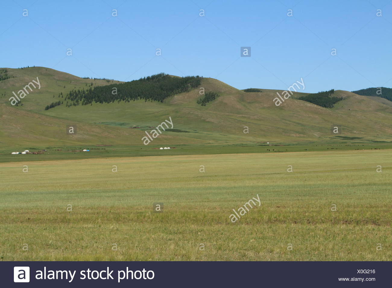 mongolian landscapes - Stock Image