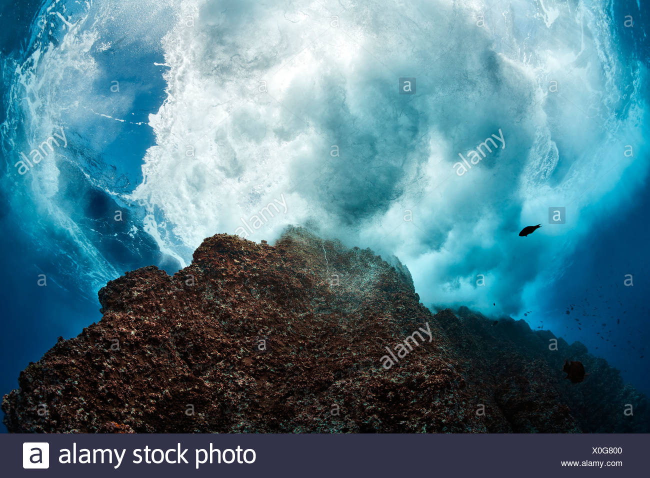 Towering rock bathed in waves, cliff, Roca Partida, Revillagigedo Islands, Mexico, America, Eastern Pacific - Stock Image