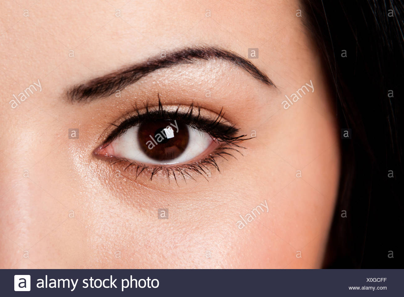 Beautiful female eyebrow and brown eye with lashes on fair skin. - Stock Image