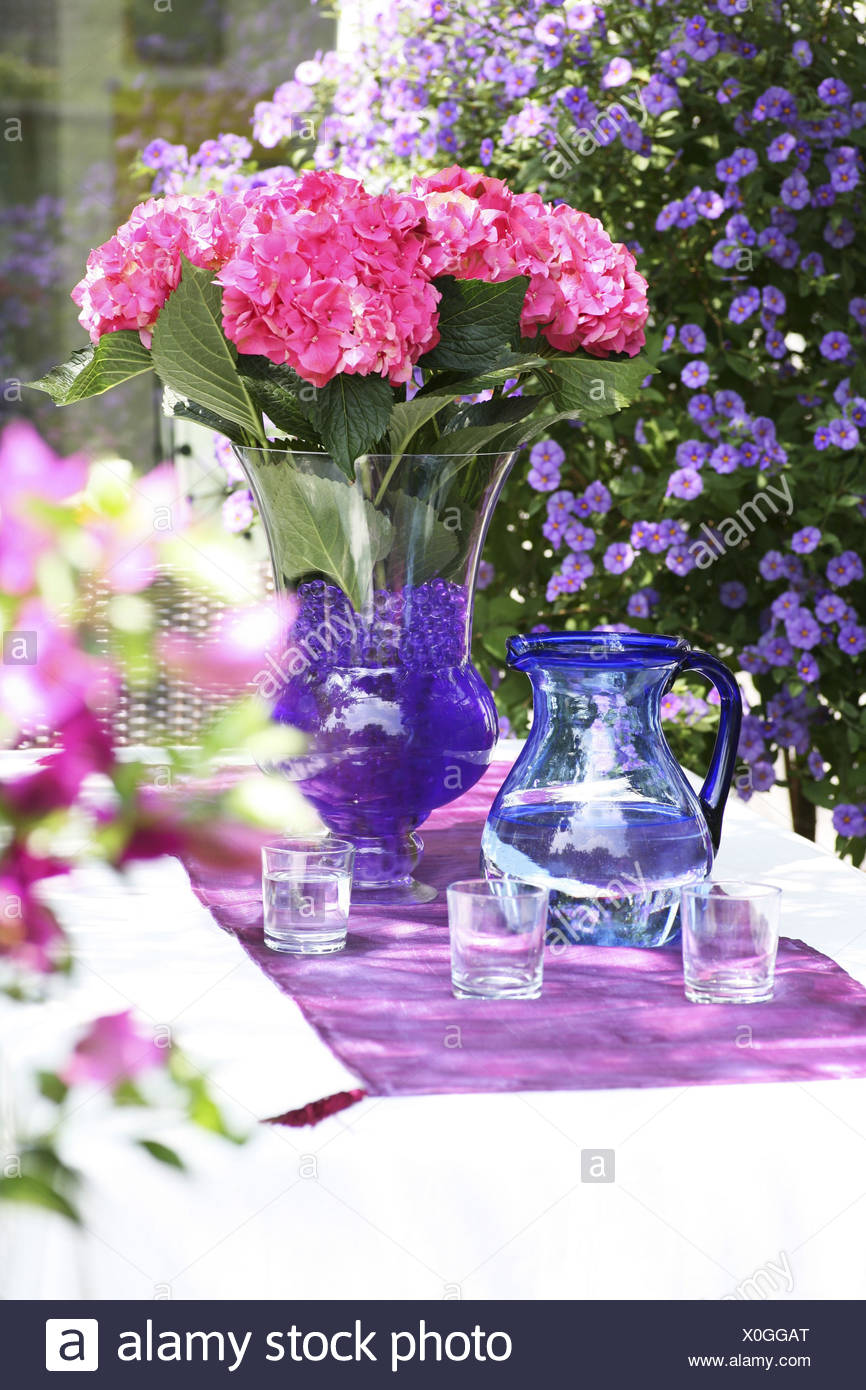 Vase colored water stock photos vase colored water stock images hydrangeas in vase on garden table with water jug jug glasses glass reviewsmspy