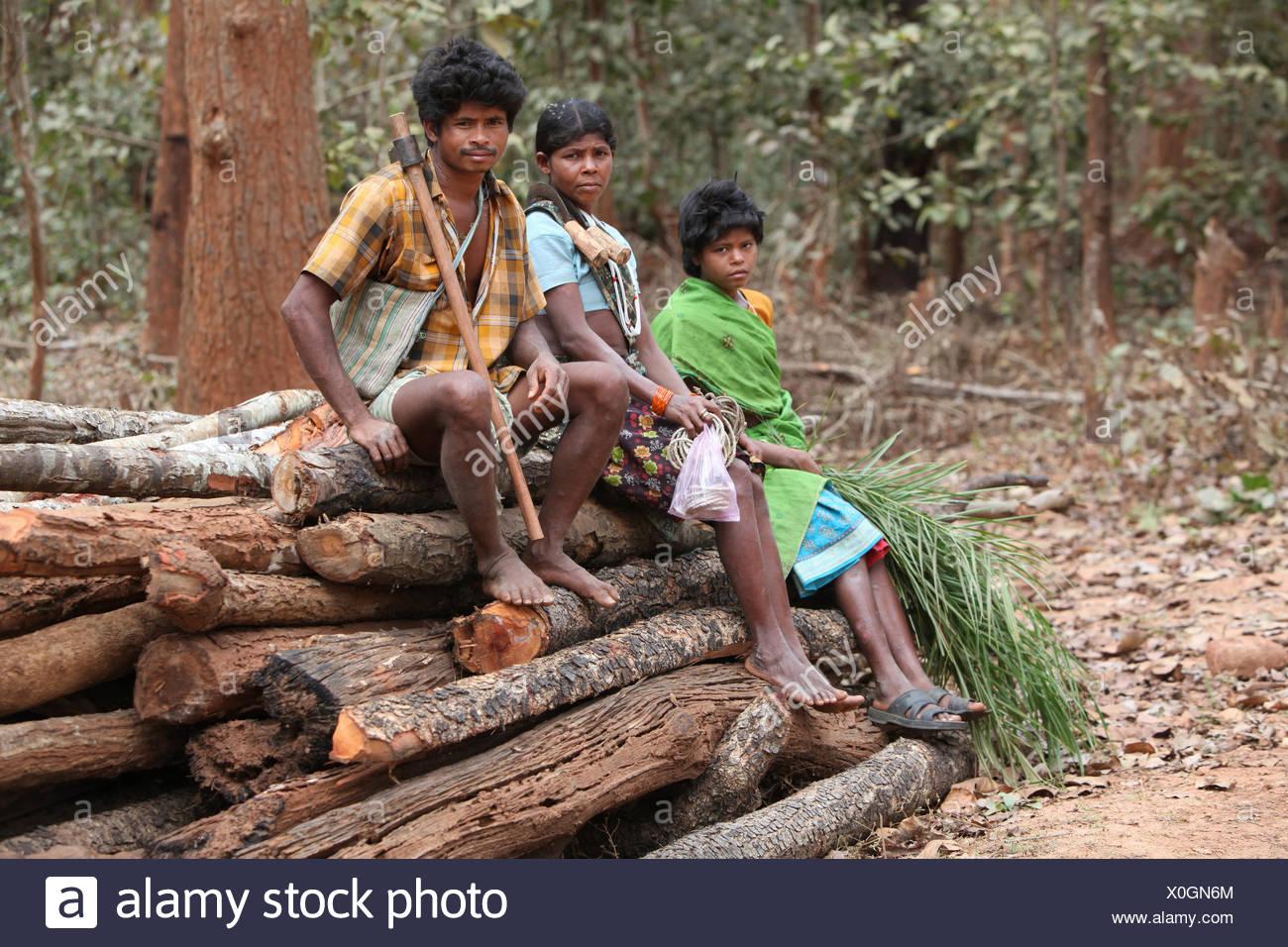 Abhuj Maria Tribal Family sitting on wood logs in Rainpul forest, Orrcha, Chattisgadh, India - Stock Image