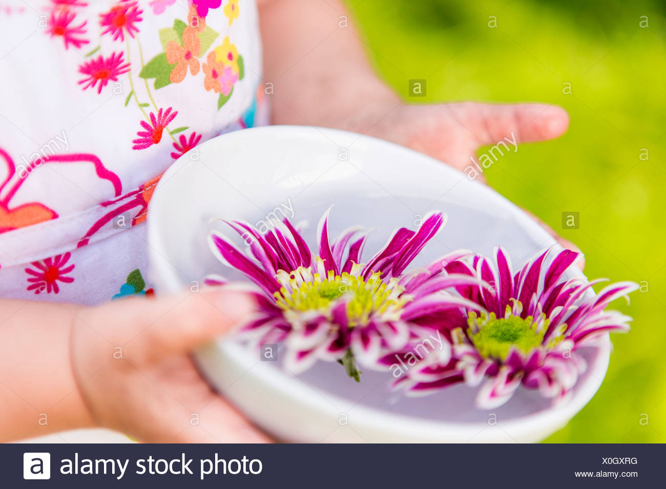 Girl holding flowers in bowl outdoors - Stock Image