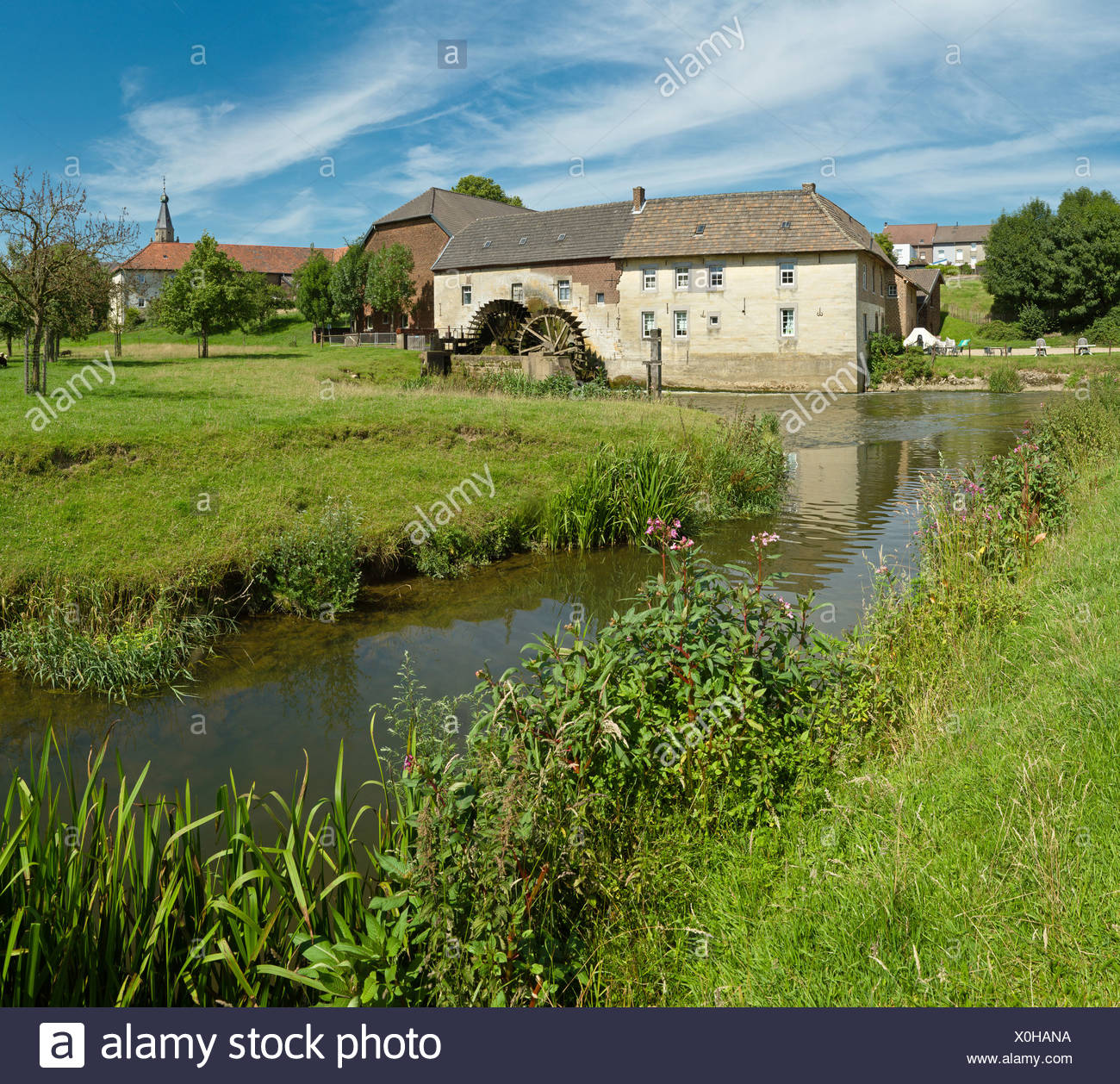 Netherlands, Holland, Europe, Wijlre, Water wheel mill, Water wheel, windmill, water, flowers, summer, - Stock Image