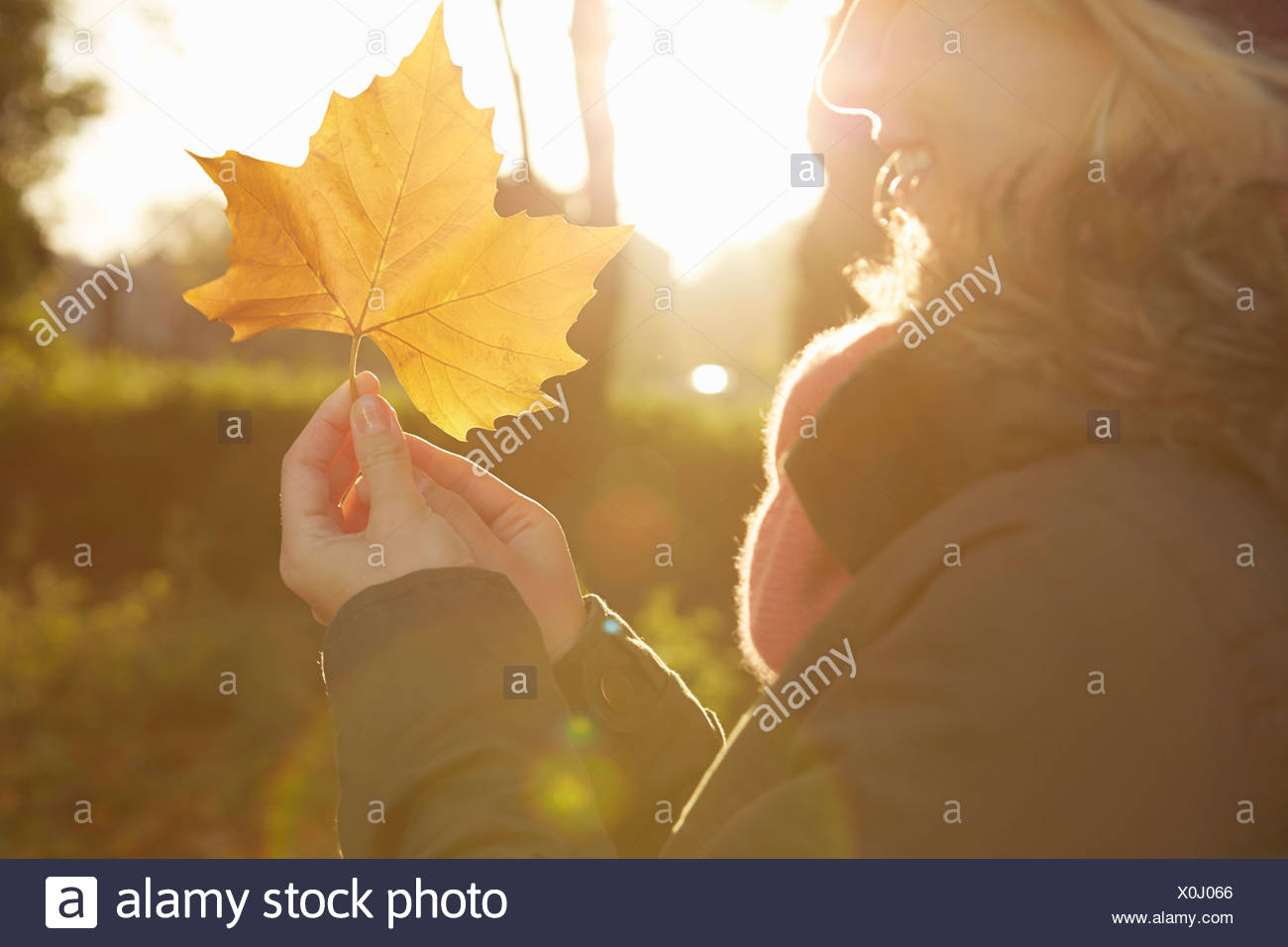 Portrait of young woman in park, holding autumn leaf - Stock Image
