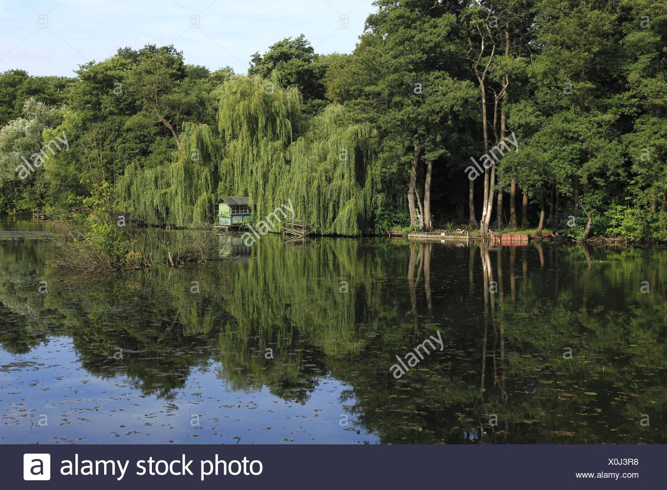 Nature reserve Niepkuhlen in Krefeld, North Rhine-Westphalia, Germany, - Stock Image