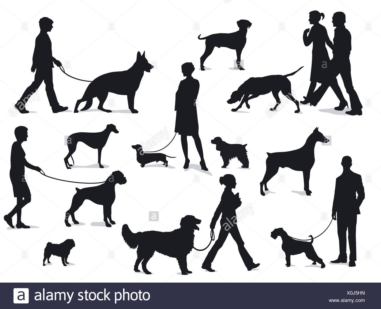 Walking with dogs - Stock Image