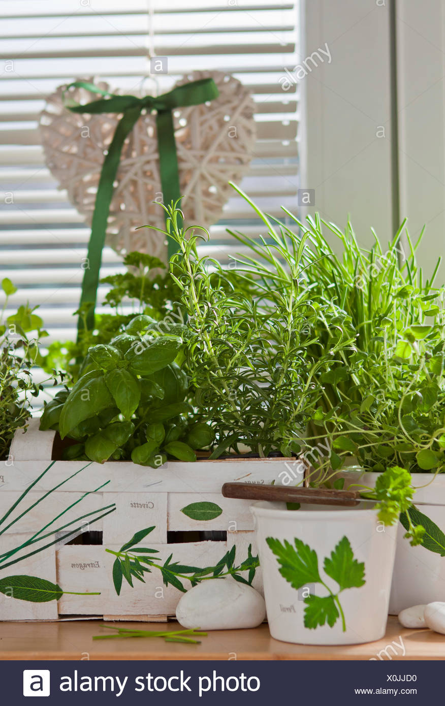decoupage motive with herbs Stock Photo